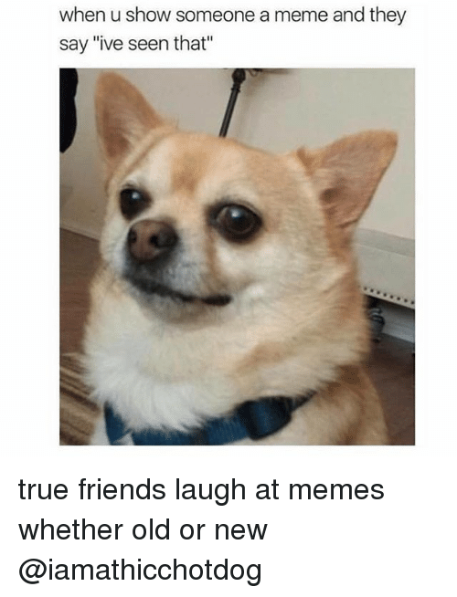 """Orly: when u show someone a meme and they  say """"ive seen that"""" true friends laugh at memes whether old or new @iamathicchotdog"""