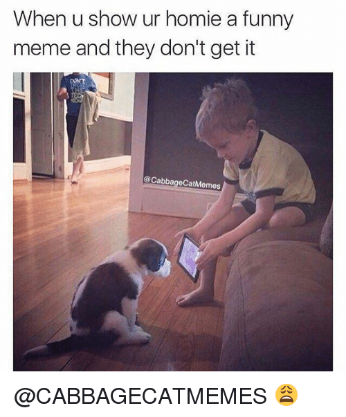 Funny, Homie, and Meme: When u show ur homie a funny  meme and they don't get it  Cabbage CatMemes @CABBAGECATMEMES 😩