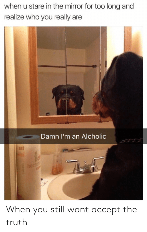 the mirror: when u stare in the mirror for too long and  realize who you really are  Damn I'm an Alcholic  saf When you still wont accept the truth