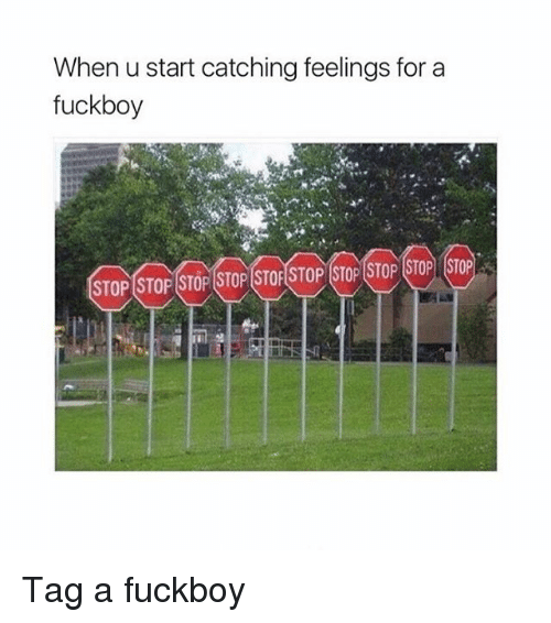 Fuckboy, Girl Memes, and For: When u start catching feelings for a  fuckboy  STOP STOP STOP STOP STOFSTOP STOP STOP STOP STOP Tag a fuckboy