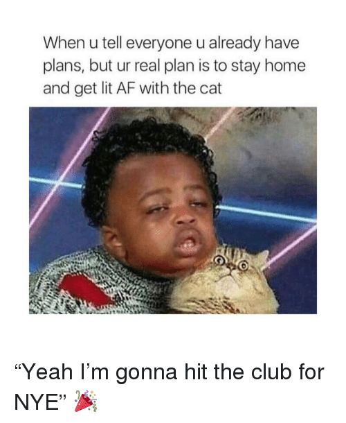 "Lit AF: When u tell everyone u already have  plans, but ur real plan is to stay home  and get lit AF with the cat ""Yeah I'm gonna hit the club for NYE"" 🎉"