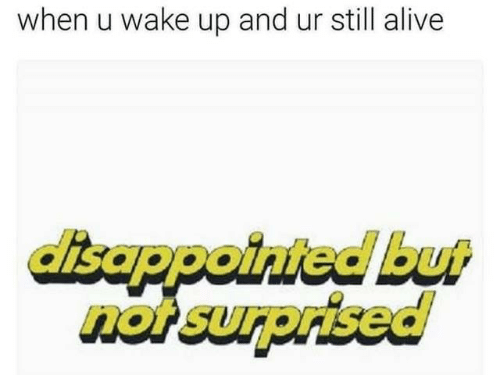 Disappointed But Not Surprised: when u wake up and ur still alive  disappointed but  not surprised