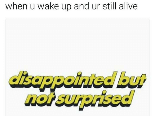 Not Surprised: when u wake up and ur still alive  isappointed but  not surprised