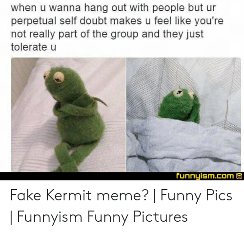 Funny Kermit Memes: when u wanna hang out with people but ur  perpetual self doubt makes u feel like you're  not really part of the group and they just  tolerate u  Funnyism.com Fake Kermit meme? | Funny Pics | Funnyism Funny Pictures