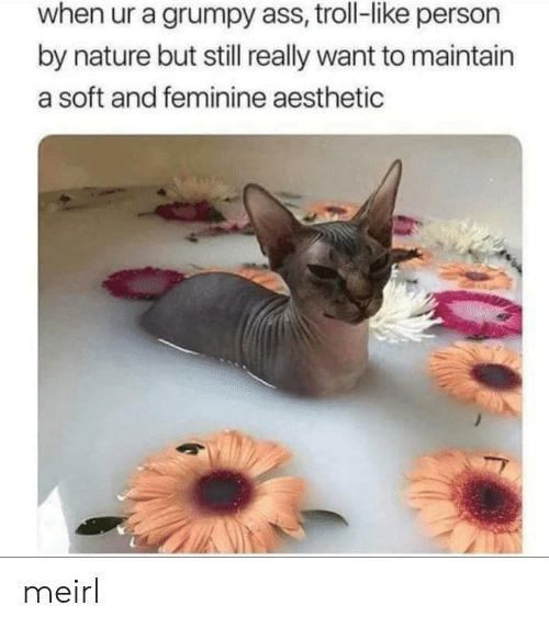 maintain: when ur a grumpy ass, troll-like person  by nature but still really want to maintain  a soft and feminine aesthetic meirl