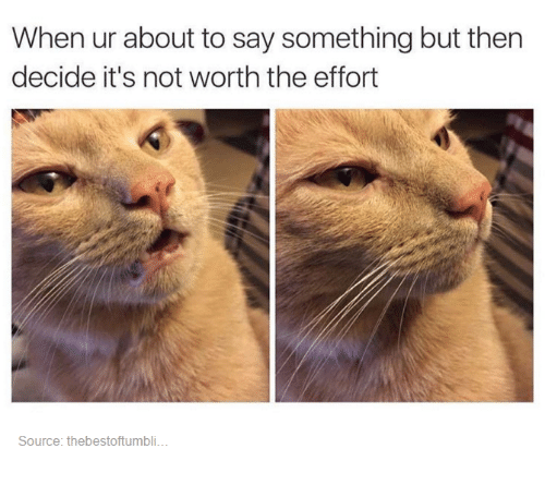 not worth the effort: When ur about to say something but then  decide it's not worth the effort  Source: thebestoftumbli.