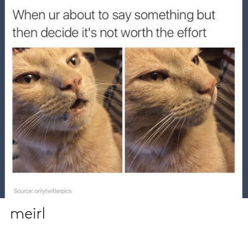 not worth the effort: When ur about to say something but  then decide it's not worth the effort  Source: onlytwitterpics meirl