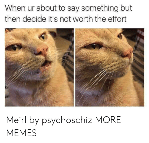 not worth the effort: When ur about to say something but  then decide it's not worth the effort Meirl by psychoschiz MORE MEMES