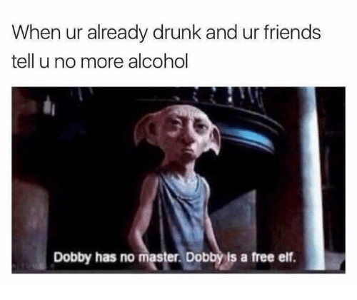 Drunk, Elf, and Friends: When ur already drunk and ur friends  tell u no more alcohol  Dobby has no  ster Dobbyis a free elf.
