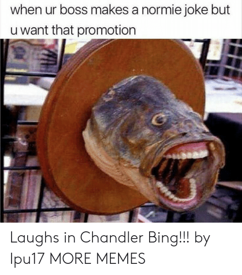 promotion: when ur boss makes a normie joke but  u want that promotion Laughs in Chandler Bing!!! by Ipu17 MORE MEMES