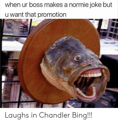 promotion: when ur boss makes a normie joke but  u want that promotion Laughs in Chandler Bing!!!