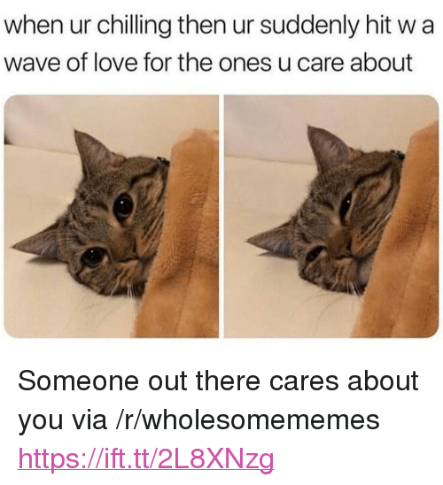 """Love, Wave, and Via: when ur chilling then ur suddenly hit w a  wave of love for the ones u care about <p>Someone out there cares about you via /r/wholesomememes <a href=""""https://ift.tt/2L8XNzg"""">https://ift.tt/2L8XNzg</a></p>"""
