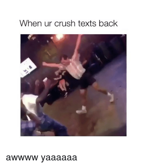 Crush, Girl Memes, and Texts: When ur crush texts back awwww yaaaaaa