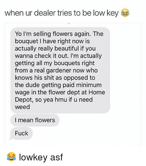 Beautiful, Dude, and Low Key: when ur dealer tries to be low key  Yo I'm selling flowers again. The  bouquet I have right now is  actually really beautiful if you  wanna check it out. I'm actually  getting all my bouquets right  from a real gardener now who  knows his shit as opposed to  the dude getting paid minimum  wage in the flower dept at Home  Depot, so yea hmu if u need  weed  I mean flowers  Fuck 😂 lowkey asf