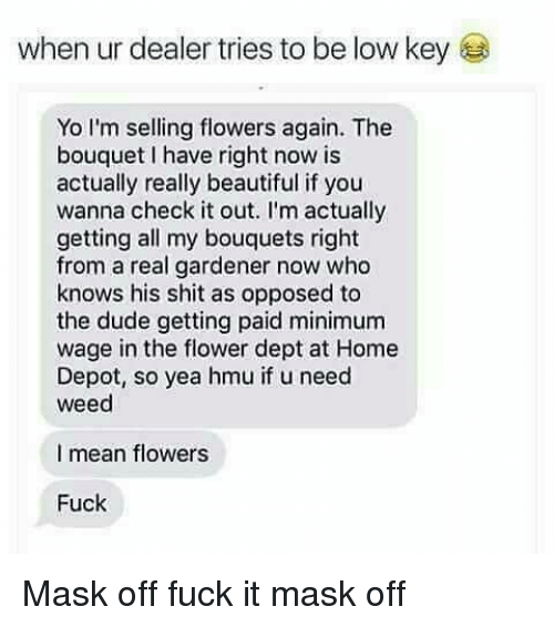 Beautiful, Dude, and Low Key: when ur dealer tries to be low key  Yo I'm selling flowers again. The  bouquet l have right now is  actually really beautiful if you  wanna check it out. I'm actually  getting all my bouquets right  from a real gardener now who  knows his shit as opposed to  the dude getting paid minimum  wage in the flower dept at Home  Depot, so yea hmu if u need  weed  I mean flowers  Fuck Mask off fuck it mask off