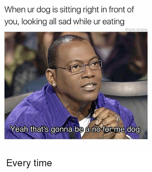 Thats Gonna Be A No: When ur dog is sitting right in front of  you, looking all sad while ur eating  @tank.sinatra  Yeah that's gonna be a no for me dog Every time
