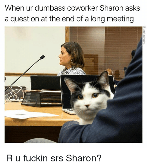 Funny, Asks, and Srs: When ur dumbass coworker Sharon asks  a question at the end of a long meeting R u fuckin srs Sharon?