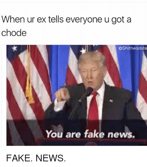 Fake, Memes, and News: When ur ex tells everyone u got a  chode  @Shitheadste  You are fake news. FAKE. NEWS.