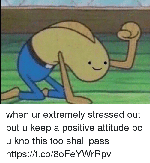 Memes, Attitude, and 🤖: when ur extremely stressed out but u keep a positive attitude bc u kno this too shall pass https://t.co/8oFeYWrRpv