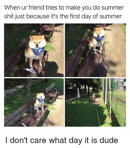 Dude, Funny, and Shit: When ur friend tries to make you do summer  shit just because it's the first day of summer I don't care what day it is dude