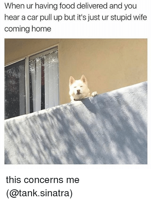 Food, Memes, and Home: When ur having food delivered and you  hear a car pull up but it's just ur stupid wife  coming home this concerns me (@tank.sinatra)