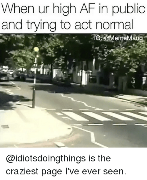 Af, Memes, and High AF: When ur high AF in public  and trying to act normal  IG: emeMan @idiotsdoingthings is the craziest page I've ever seen.