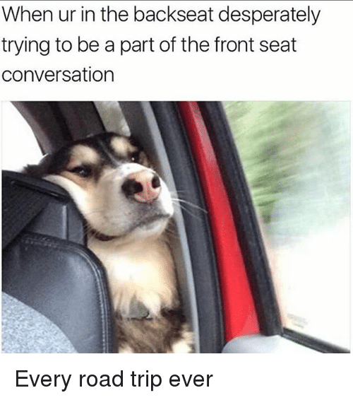 Road Tripping: When ur in the backseat desperately  trying to be a part of the front seat  conversation Every road trip ever