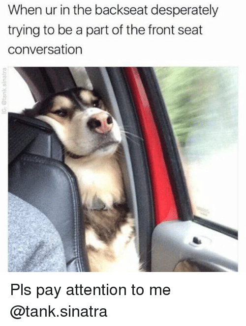 tanked: When ur in the backseat desperately  trying to be a part of the front seat  conversation Pls pay attention to me @tank.sinatra