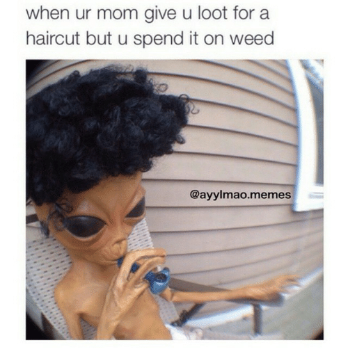 Haircut, Moms, and Weed: when ur mom give u loot for a haircut but u