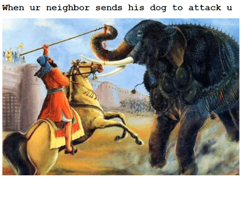 Sick Sikh: When ur neighbor sends his dog to attack u