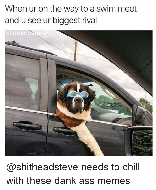 Ass, Chill, and Dank: When ur on the way to a swim meet  and u see ur biggest rival  Shithea @shitheadsteve needs to chill with these dank ass memes