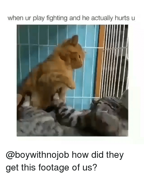 Girl Memes, How, and Play: when ur play fighting and he actually hurts u @boywithnojob how did they get this footage of us?