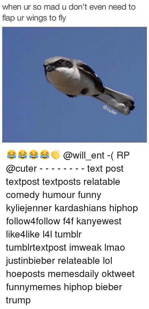 flapping: when ur so mad u don't even need to  flap ur wings to fly 😂😂😂😂👏 @will_ent -( RP @cuter - - - - - - - - text post textpost textposts relatable comedy humour funny kyliejenner kardashians hiphop follow4follow f4f kanyewest like4like l4l tumblr tumblrtextpost imweak lmao justinbieber relateable lol hoeposts memesdaily oktweet funnymemes hiphop bieber trump