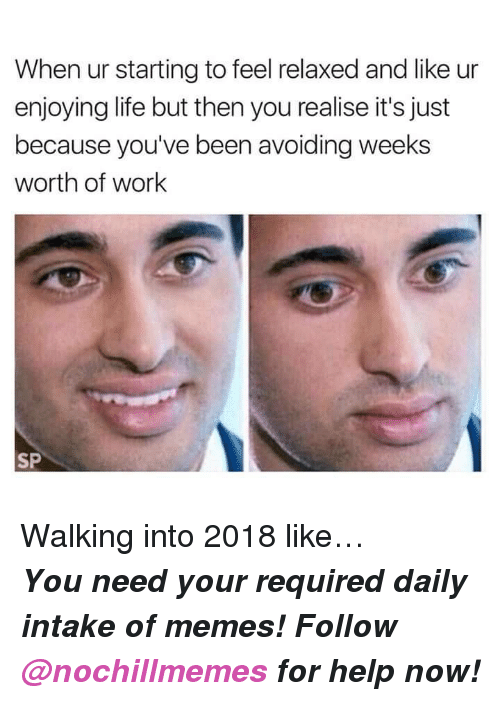 Enjoying Life: When ur starting to feel relaxed and like ur  enjoying life but then you realise it's just  because you've been avoiding weeks  worth of work  SP <p>Walking into 2018 like…</p><p><b><i>You need your required daily intake of memes! Follow <a>@nochillmemes</a> for help now!</i></b><br/></p>