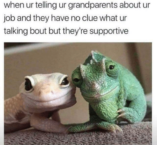 No Clue: when ur telling ur grandparents about ur  job and they have no clue what ur  talking bout but they're supportive