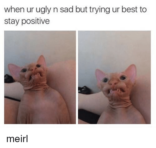 stay positive: when ur ugly n sad but trying ur best to  stay positive meirl
