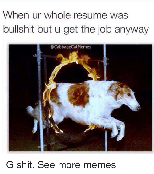 G Shit: When ur whole resume was  bullshit but u get the job anyway  CacabbageCatMemes G shit. See more memes