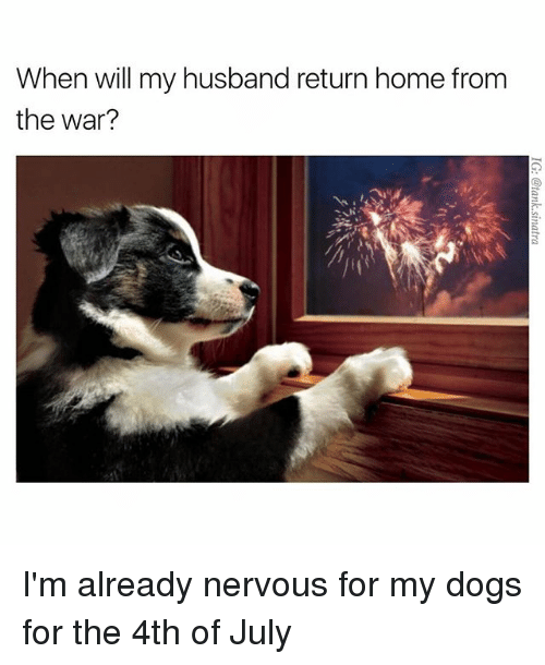 Funny Meme For My Husband : When will my husband return home from the war i m already