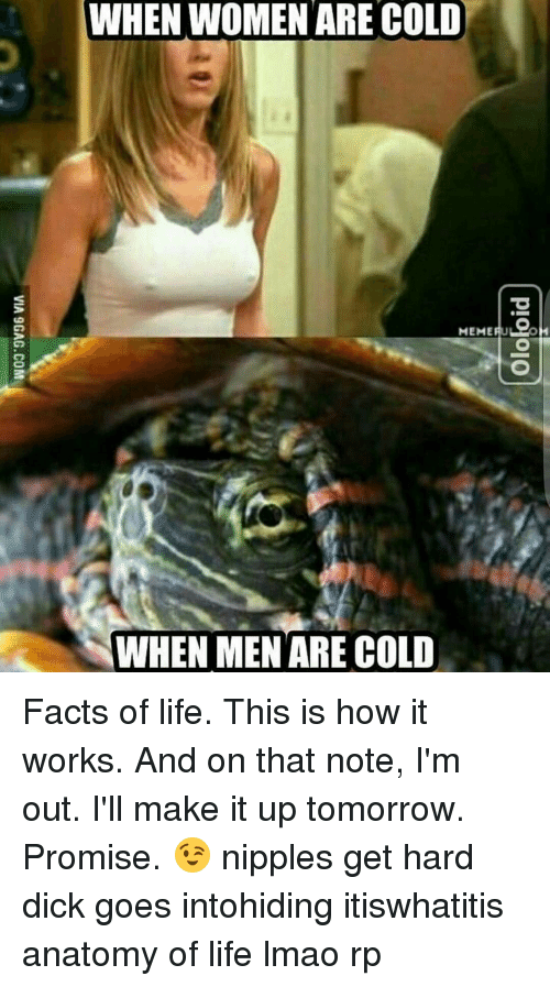 Funny Facts Of Life Memes Of 2016 On Sizzle-9500