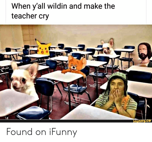 Wildin: When y'all wildin and make the  teacher cry  tunny.ce Found on iFunny