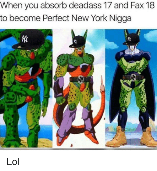 Memes, New York, and Deadass: When you absorb deadass 17 and Fax 18  to become Perfect New York Nigga Lol