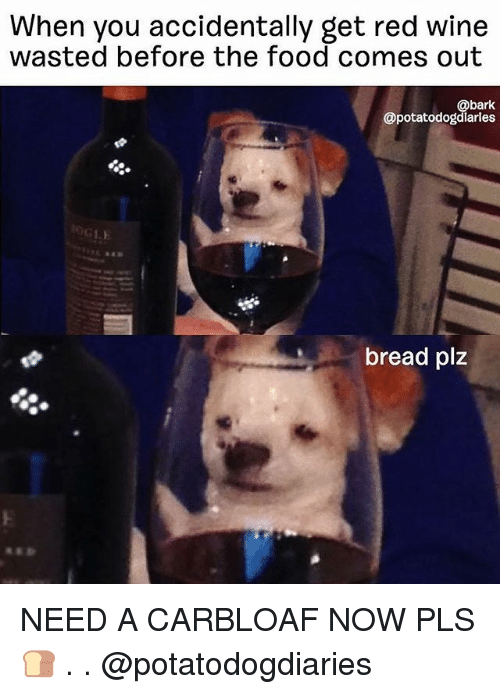 Food, Memes, and Wine: When you accidentally get red wine  wasted before the food comes out  @bark  @potatodogdlarles  bread plz NEED A CARBLOAF NOW PLS 🍞 . . @potatodogdiaries