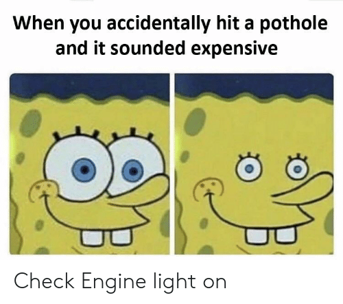 Pothole: When you accidentally hit a pothole  and it sounded expensive Check Engine light on