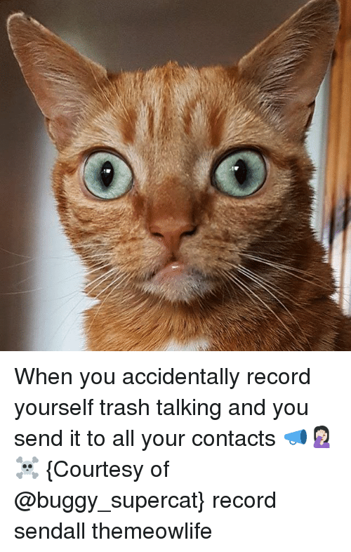 Memes, Trash, and Record: When you accidentally record yourself trash talking and you send it to all your contacts 📣🤦🏻‍♀️☠️ {Courtesy of @buggy_supercat} record sendall themeowlife