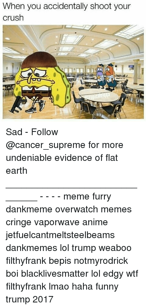 Anime, Black Lives Matter, and Crush: When you accidentally shoot your  crush Sad - Follow @cancer_supreme for more undeniable evidence of flat earth _______________________________ - - - - meme furry dankmeme overwatch memes cringe vaporwave anime jetfuelcantmeltsteelbeams dankmemes lol trump weaboo filthyfrank bepis notmyrodrick boi blacklivesmatter lol edgy wtf filthyfrank lmao haha funny trump 2017