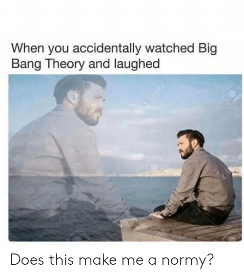 Big Bang Theory: When you accidentally watched Big  Bang Theory and laughed Does this make me a normy?