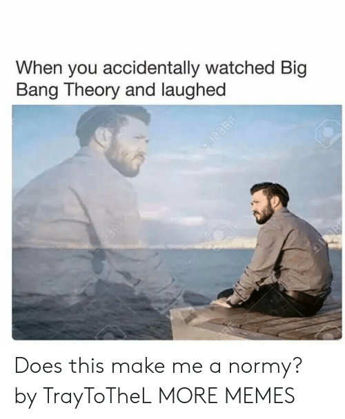 Big Bang Theory: When you accidentally watched Big  Bang Theory and laughed Does this make me a normy? by TrayToTheL MORE MEMES