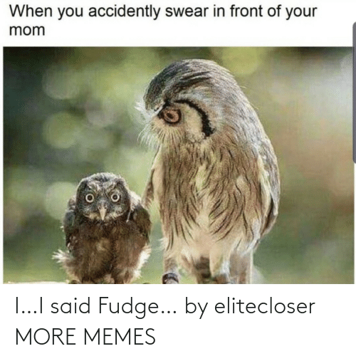 accidently: When you accidently swear in front of your  mom I…I said Fudge… by elitecloser MORE MEMES