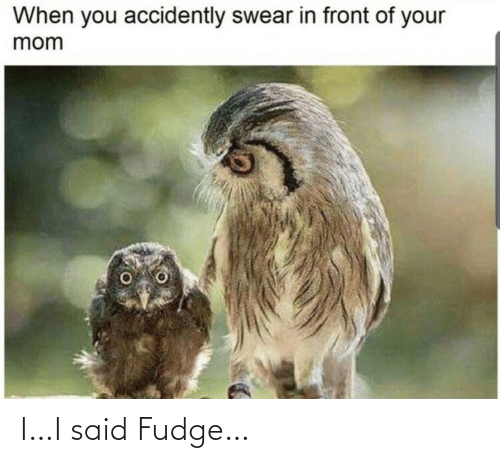 accidently: When you accidently swear in front of your  mom I…I said Fudge…
