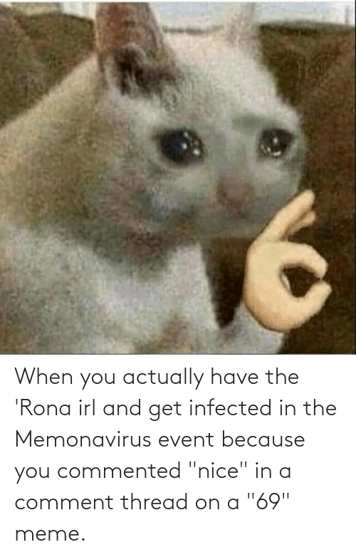 """69 Meme: When you actually have the 'Rona irl and get infected in the Memonavirus event because you commented """"nice"""" in a comment thread on a """"69"""" meme."""